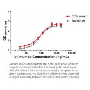 Anti-Ipilimumab Affimer<sup>®</sup> Reagent – HA, 6xHis tag
