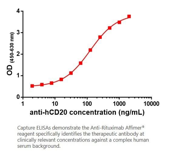 Anti-Rituximab Affimer<sup>®</sup> Reagent – HA, 6xHis tag